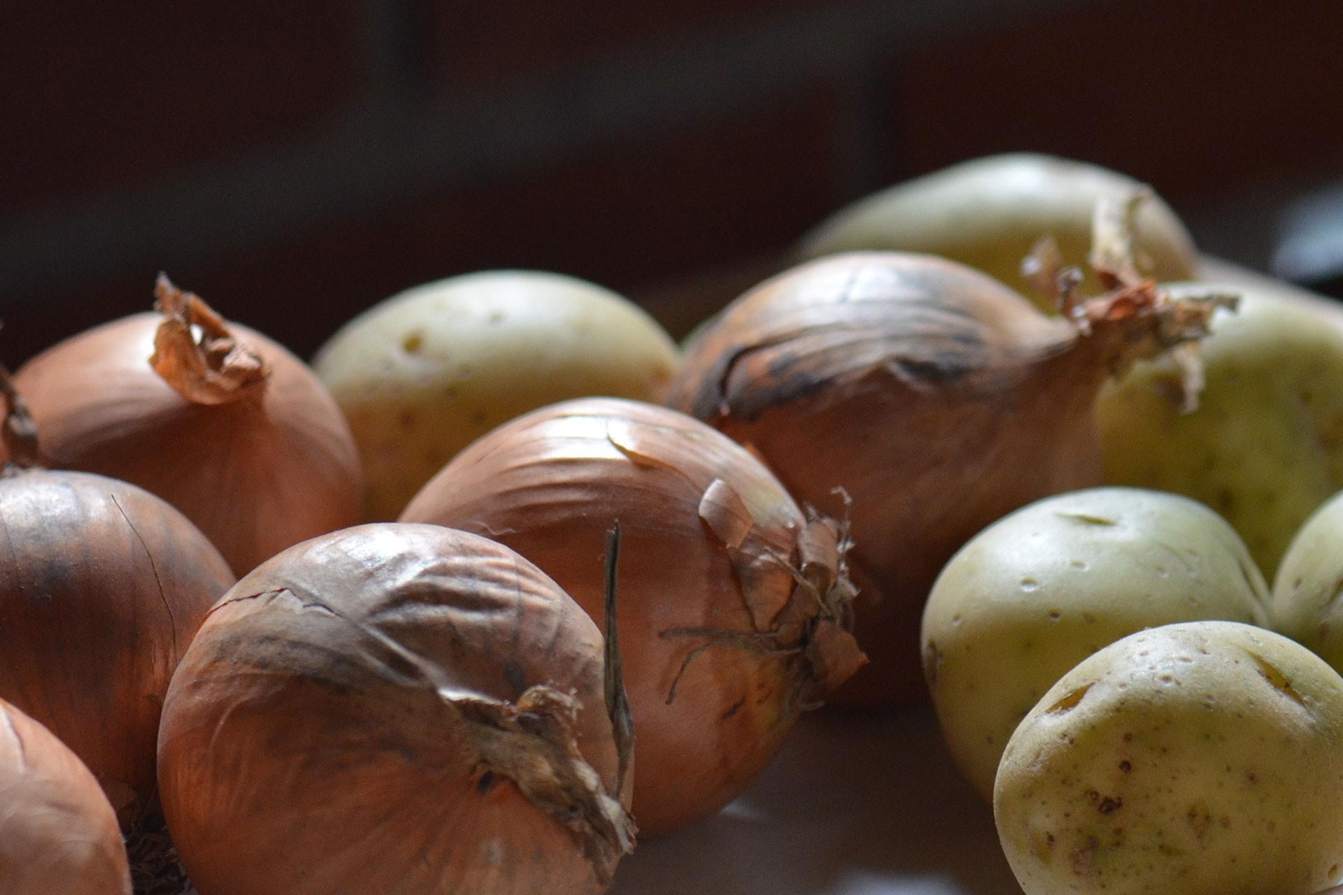 soğan ve patates