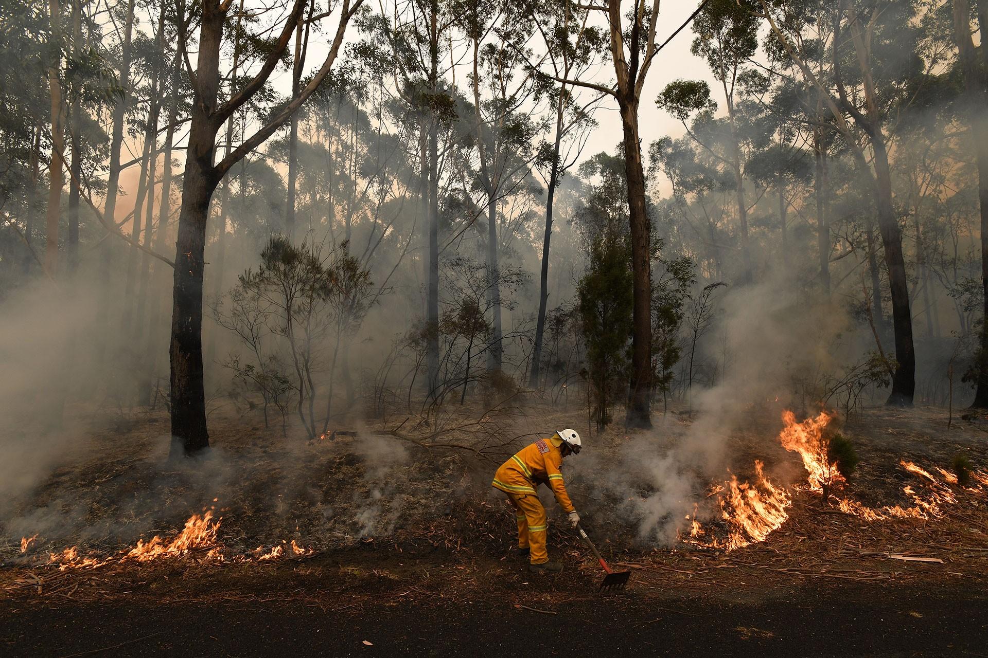 Avustralya'da yanan ormanlık alana müdahale edilirken