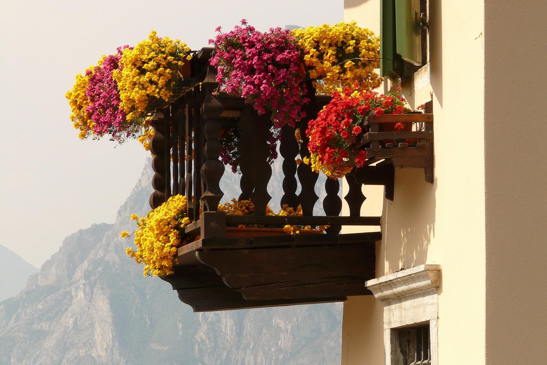 çicekli bir balkon