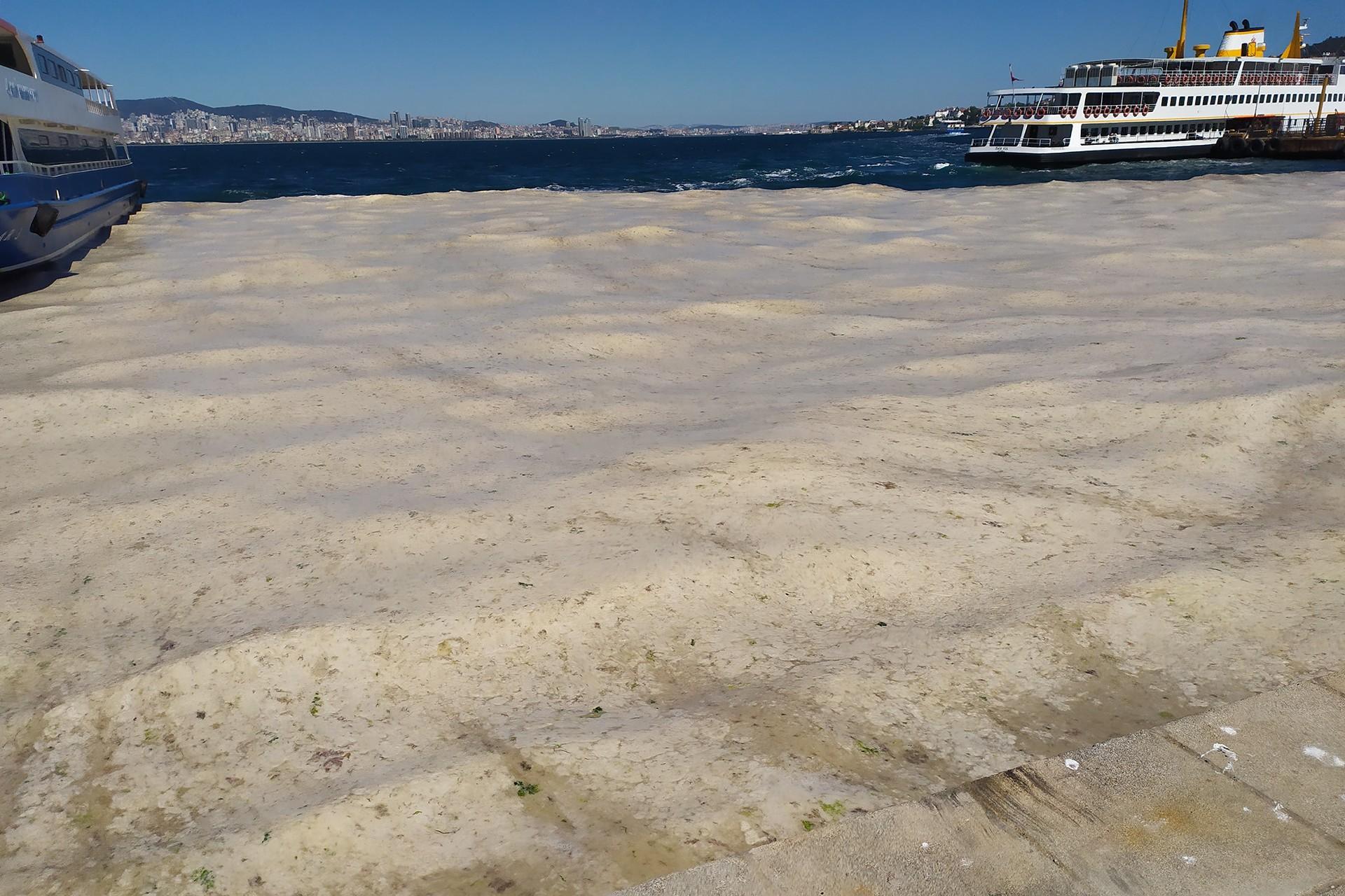 Marmara Denizi'nden müsilaj görüntüsü..