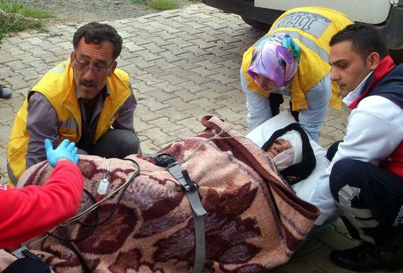 Çaşır toplayan 5 kadından birine ayı saldırdı