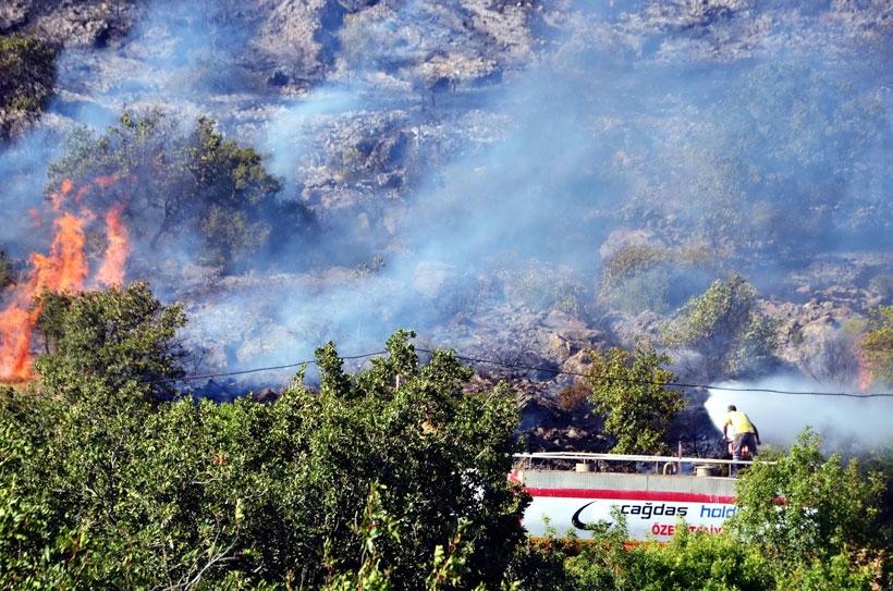Atılan sigara izmariti 14 hektar alanı küle çevirdi