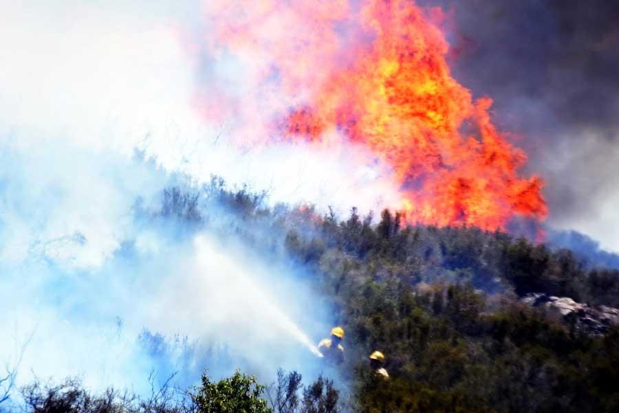 Meteorolojiden 'orman yangını' uyarısı