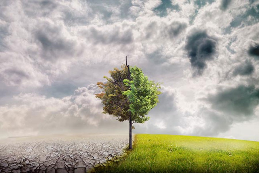İklim değişikliği en çok küçük üreticiyi vuruyor