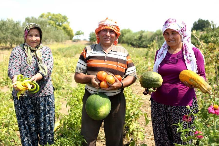 CHP'li Sarıbal: Havza bazlı destek, çiftçiye çare olmayacak