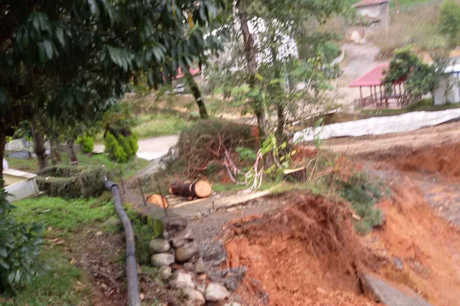 Arhavi'de yoğun yağış heyelan getirdi