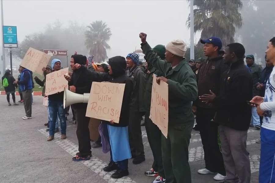 Güney Afrikalı tarım işçilerinin grevi sona erdi