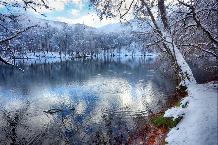 Yedigöller'de kış güzelliği