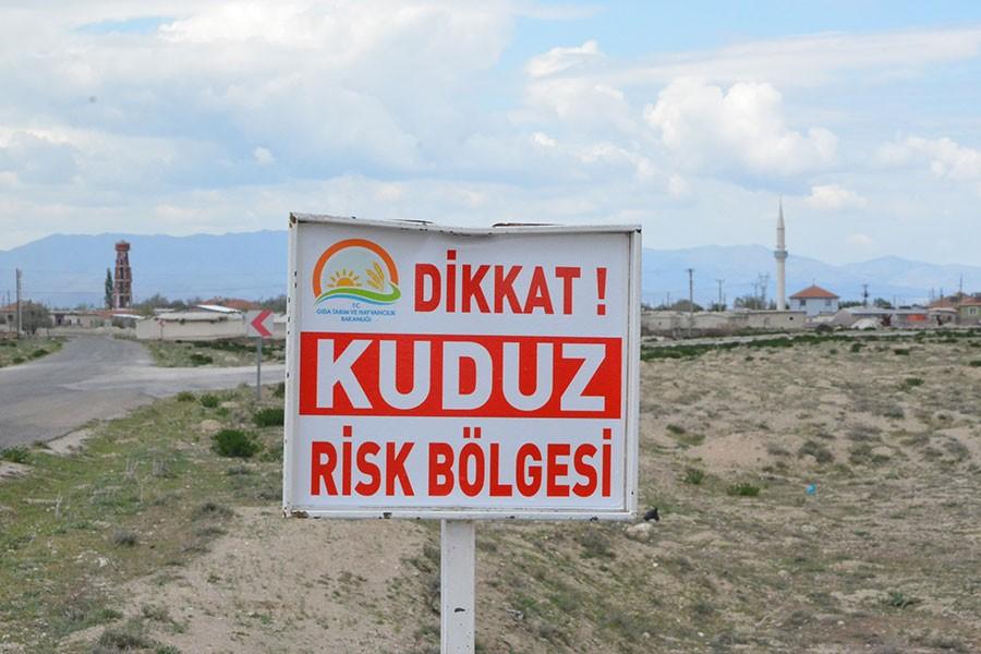 Konya'nın Adabağ Mahallesi'nde kuduz paniği