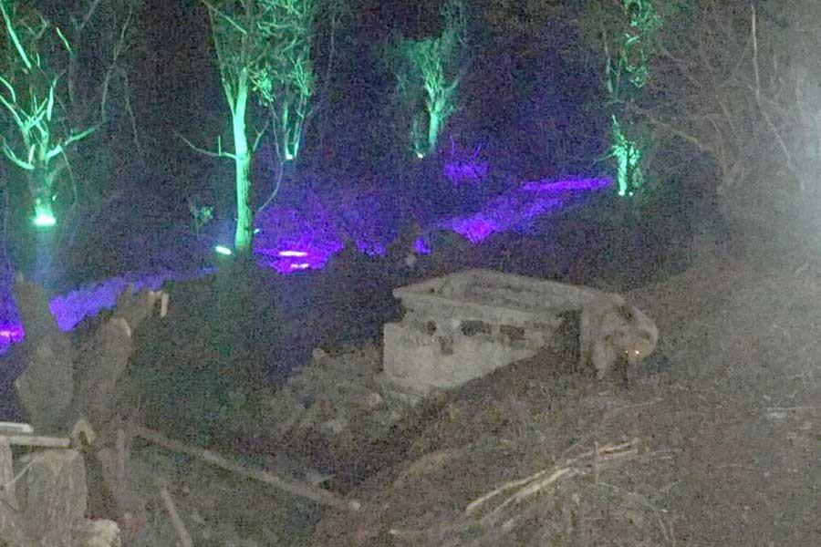 Şavşat'ta ayılar tatil köyünün çöp kutularından besleniyor