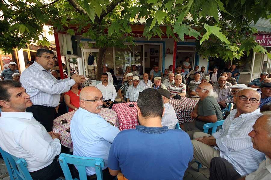 CHP Genel Sekreteri: Zeytin üreticileri tek yürek olmalı