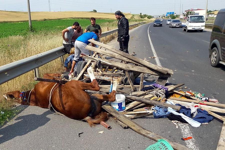 Kamyon at arabasına çarptı: 3 yaralı