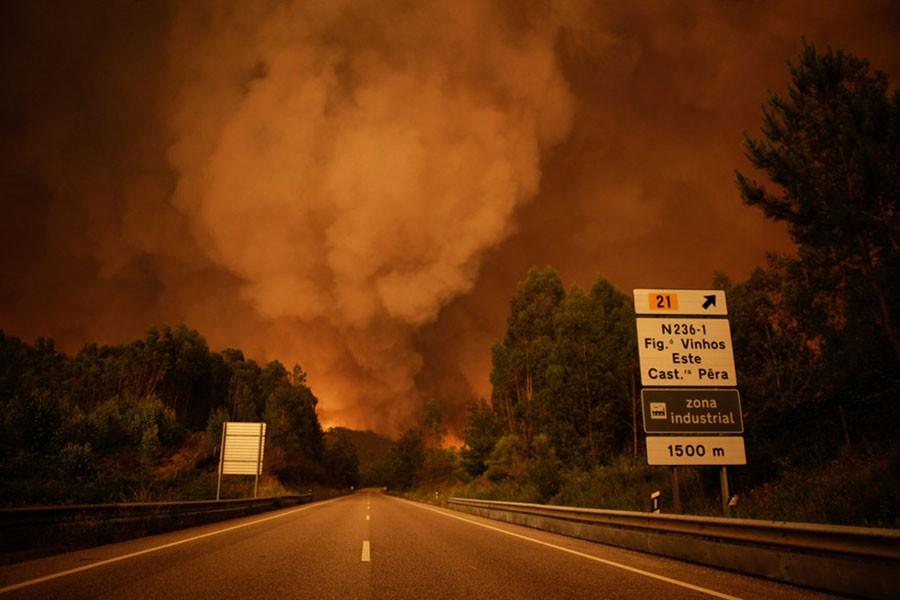 7 soruda Portekiz yangını