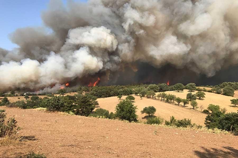 Çanakkale'deki orman yangını devam ediyor