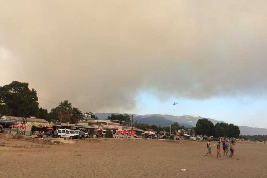 'Orman yangınları büyük şirketlerin ekmeğine yağ sürüyor'