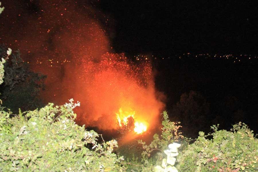 Antalya Serik'teki yangında 40 dönüm zarar gördü