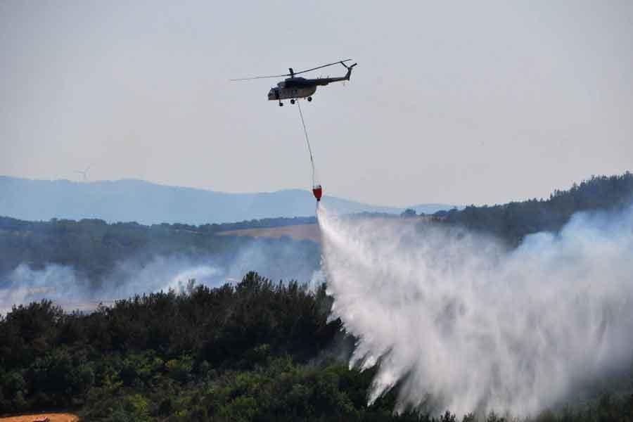 Tekirdağ'daki orman yangını söndürüldü