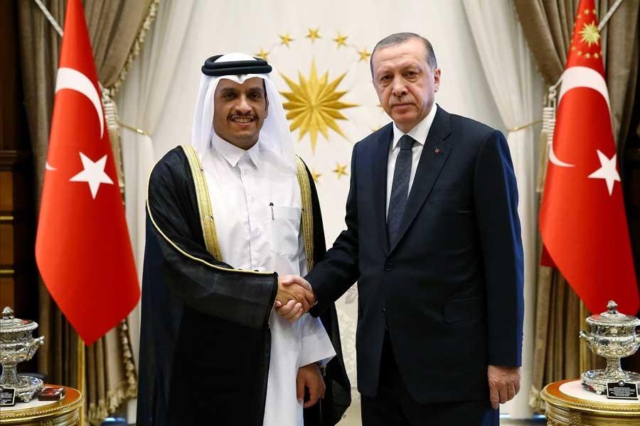 Erdoğan, Katar Dışişleri Bakanı El Sani'yi kabul etti