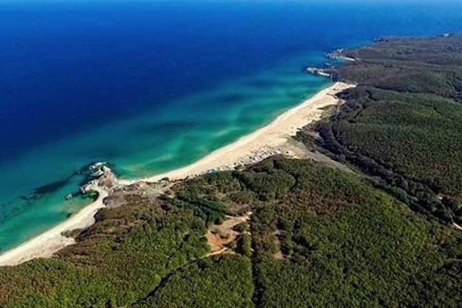 Türk Akımı'na projesi için 57 bin 709 ağaç kesilecek