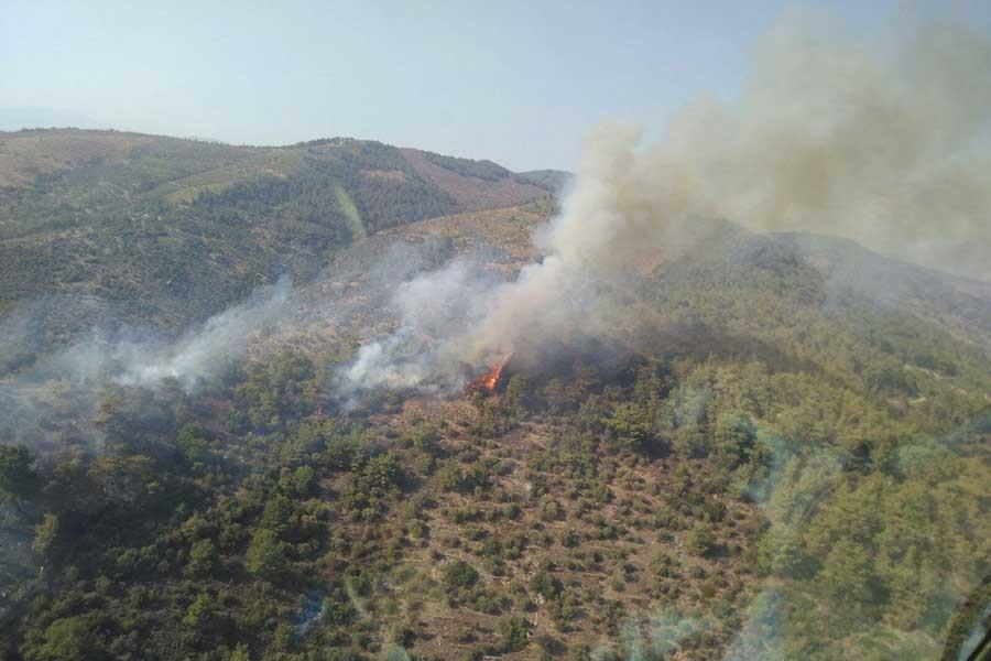 Torbalı'da ormanlık ve makilik alanda şüpheli yangın