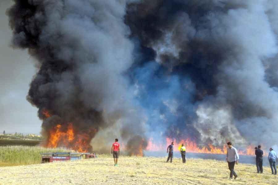Karabük, Eskişehir ve Mogan Gölü'nde yangın çıktı