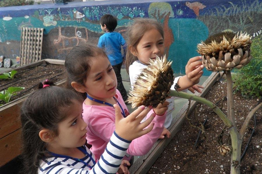 Eğitimin okulların dışına çıkması: İyi mi kötü mü?