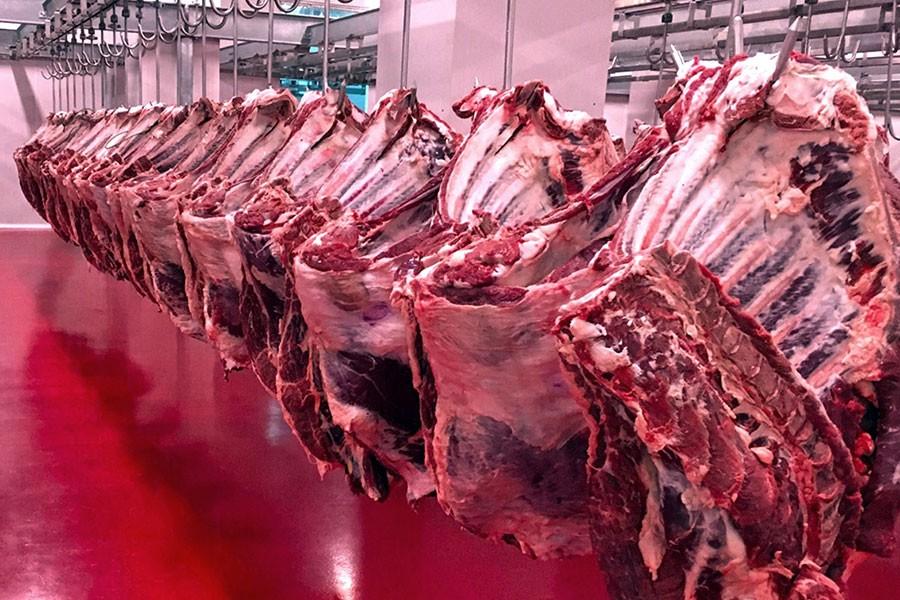 Kırmızı et üretiminde acil önlem çağrısı