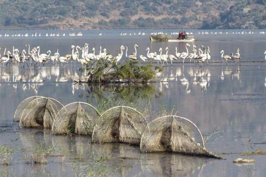 Bafa Gölü Tabiat Parkı'na maden ocağı tepkisi