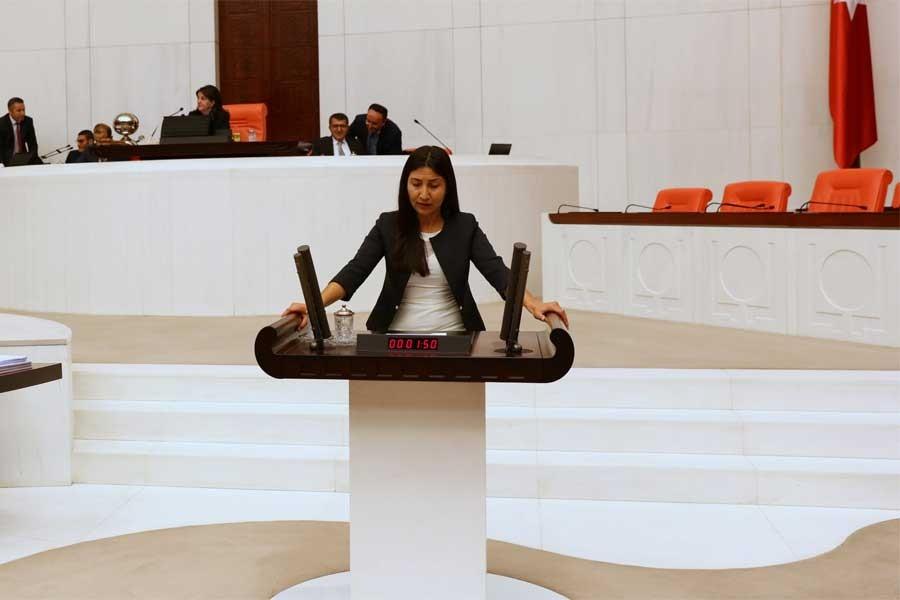 HDP'li Birlik: Şırnak'taki konutlar kimlere tahsis edilecek?