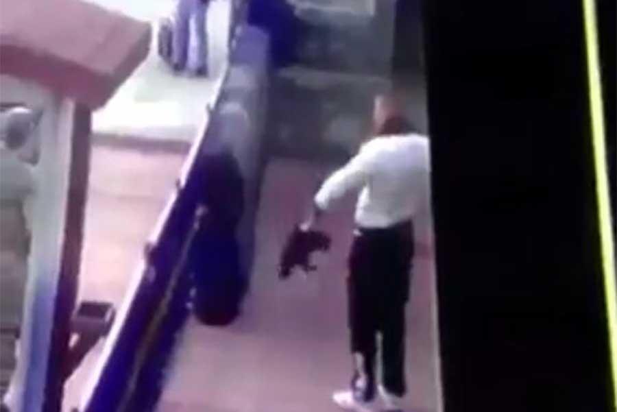 Kediye işkence yapan askeri personel serbest bırakıldı