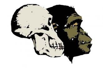 Evrim'le tanışmak için iyi bir başlangıç
