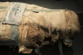 DNA çalışmalarında kullanılan ölülerin haklarını kim koruyacak?