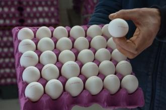 Yumurta barkodlarında hangi kod ne anlama geliyor?