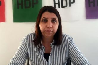 İrmez, Valinin AKP adına seçim çalışması yürütmesini Meclise taşıdı