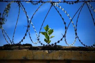 Şizofren hastası engelli tutukluya ilaçları verilmiyor