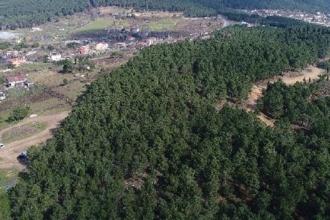 Aydos Ormanı'nda belediye eliyle yapılaşma