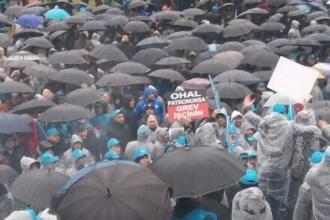 Schneider'da seçim çağrısı: AKP'ye oy veren grev kırıcılığı yapar