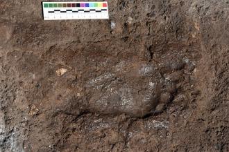 Van'da yaramaz bir Urartu çocuğunun ayak izi bulundu