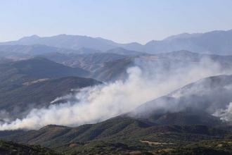 HDP'den Dersim yangını açıklaması: Valinin açıklaması boşa çıktı