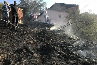 Bursa'da orman yangını: 3 hektarlık alan zarar gördü