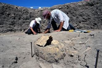 Troya Antik Kenti'nde Doğu Roma Mezarlığı'nın devamı keşfedildi