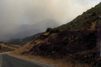 Yasak ilan edilen bölgede orman yangını
