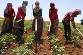 HDP'den kadın iş cinayetlerinin araştırılması önerisi