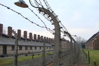 Auschwitz toplama kampı esirlerinin kurtarılmasının 75. yıl dönümü