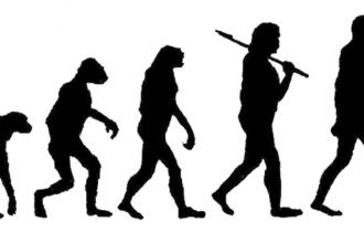 Evrim Dediğin...