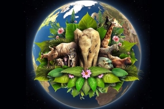 Bugün Dünya Günü...