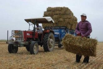 Çiftçinin durumunun özeti: Destek 4 kat arttı  borç, 14 kat