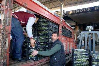 Mersin'deki sel sonrası sebze fiyatları tavukla yarışıyor