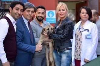 İyileşen Kuyu köpek HAÇİKO'ya teslim edildi