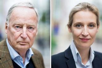 Almanya'da ırkçı parti AfD'nin adayları belli oldu